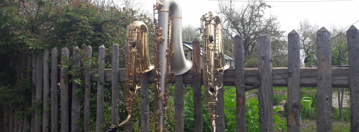 Saxophon Musikverein Batzenhofen (4)