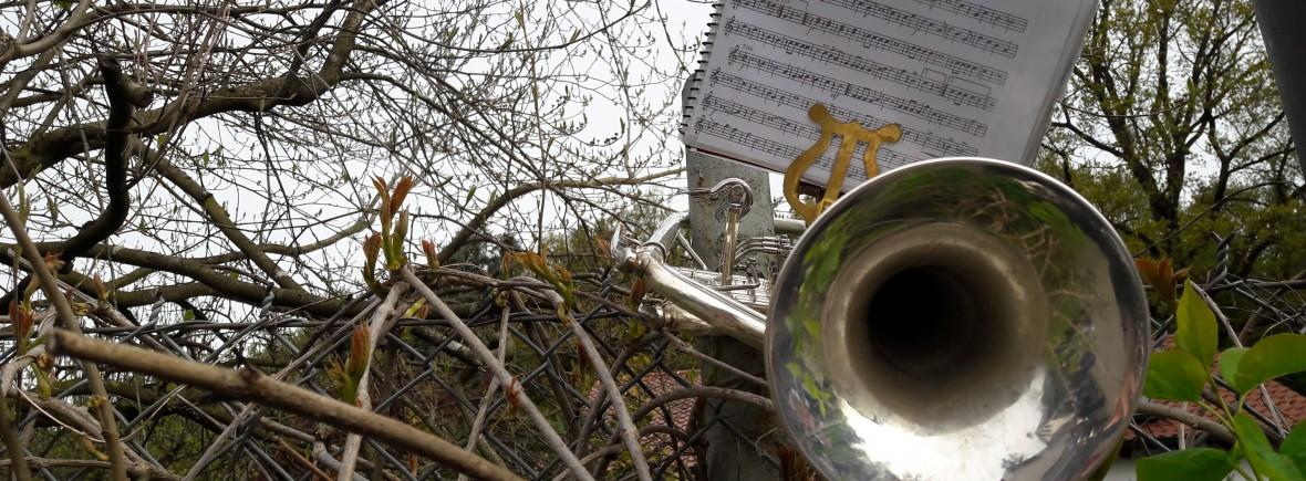 Trompete Musikverein Batzenhofen (7)